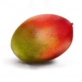 mango8x8