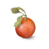 orangeart8x8
