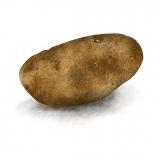 potatoart8x8